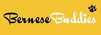 Bernese Buddies
